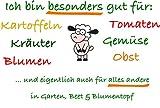 NAKED SHEEP Schafwollpellets (750 g) - Organischer...