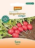 Bingenheimer Saatgut - Radieschen Radies Sora - Gemüse...