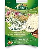 XL Saatscheibe Blumenmischung'Schneckenresistent'+...