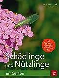 Schädlinge und Nützlinge im Garten: Mit neu eingewanderten...