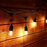 LED Glühbirnen E27 Dimmbare Tomshine Warmweiß 4 Stück...