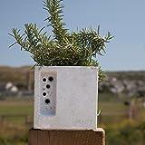 Mini beepot Blumentopf nestplatz Hotel Solitary Bee Hive...