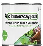 Schnexagon 375ml Schutzanstrich gegen Schnecken Bekannt aus...