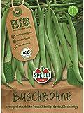 Sperli Gemüsesamen Maxi Bio-Buschbohne/Saatgut, grün