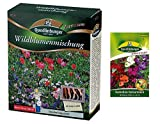 Wildblumenmischung | Blumenwiese | 1x Kamelien-Balsaminen...