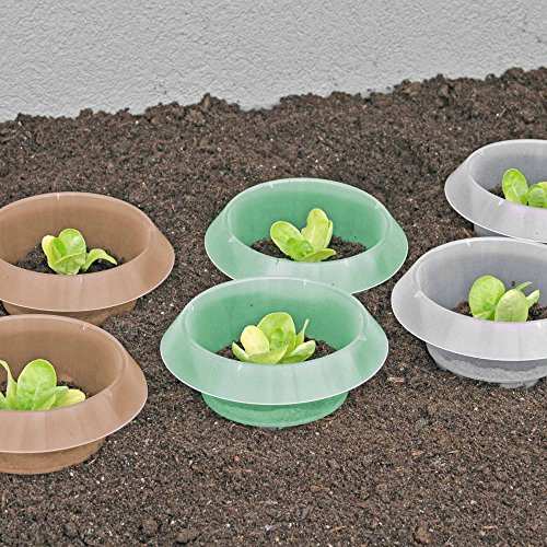 Andermatt Biogarten AG SchneckenStopp PP, grün, Set à 12...