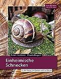 Einheimische Schnecken: In der Natur, im Garten und zu Hause...