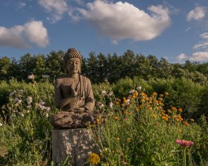Buddha+statue_Plum+Village+2015+Happy+Farm_by+Paul+Davis