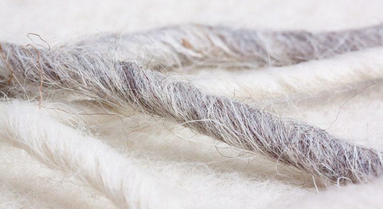 Haare oder Wolle gegen Schnecken