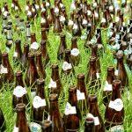 Bierfalle gegen Nacktschnecken - Erfahrungen und Alternativen