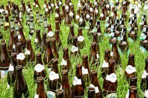 Helfen Bierfallen gegen Schnecken im Garten?