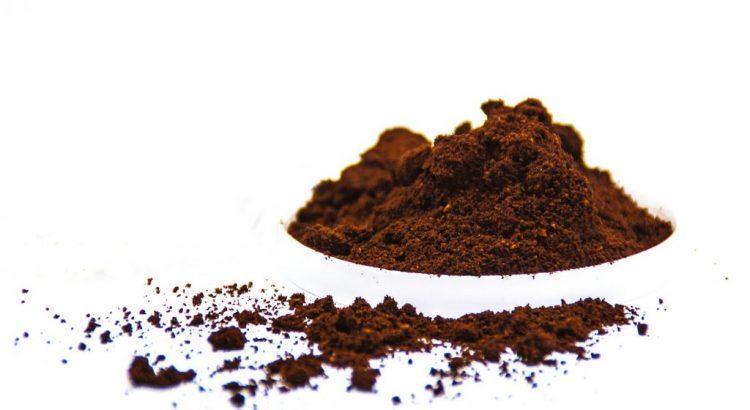 Hilft Kaffee oder Kaffeesatz gegen Schnecken