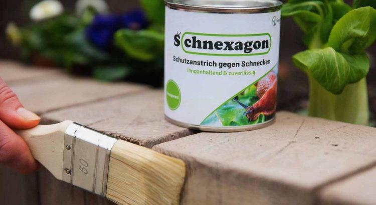 Hilft Schnexagon gegen Schnecken Nacktschnecken im Garten Schneckenschutzanstrich Schutzanstrich
