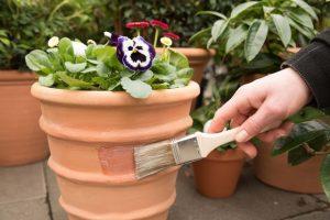 Schnexagon Anwendung Anstrich von Blumentopf mit Pinsel