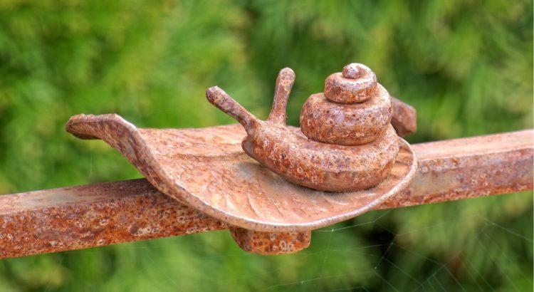 Kupfer gegen Schnecken im Garten hilfreich
