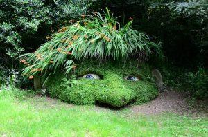 Ordnung und Sauberkeit im Garten als Ursache von Schneckenplagen