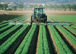 Pestizide Pflanzenschutz als Ursache von Schneckenplagen