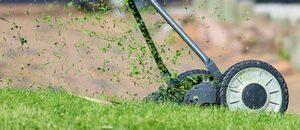 Rasen richtig mähen ist ein Schneckenschutz