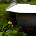 Schneckenzaun gegen Schnecken – Eine wirksame Barriere?
