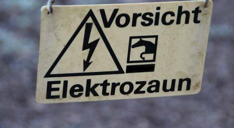 Schneckenzaun elektrisch Schneckenschutz Elektro Schneckenabwehr Schneckenabekämpfung Schnecken Zaun Nacktschnecken Garten Hochbeet