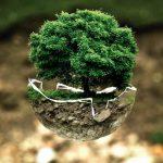 Schneckenabwehr: Wirksam & Nachhaltig | Empfehlungen.