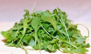 Kräuter die Schnecken nicht fressen mögen Nacktschnecken Rauke Rucola Salat schneckenresistent