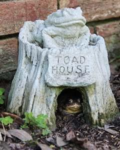 Krötenhaus als Schutz vor Feinden Kröte im Garten