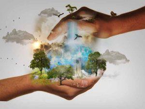 Naturschutz Respekt vor Schnecken Ehrfurcht vor dem Leben_Schneckenhilfe