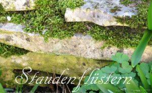 Steinmauer als Insektenhotel Insektenfreundlicher Garten