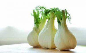 Fenchel schneckenresistente Gemüsepflanzen die Schnecken nicht mögen ungern fressen meiden abschrecken Nacktschnecken