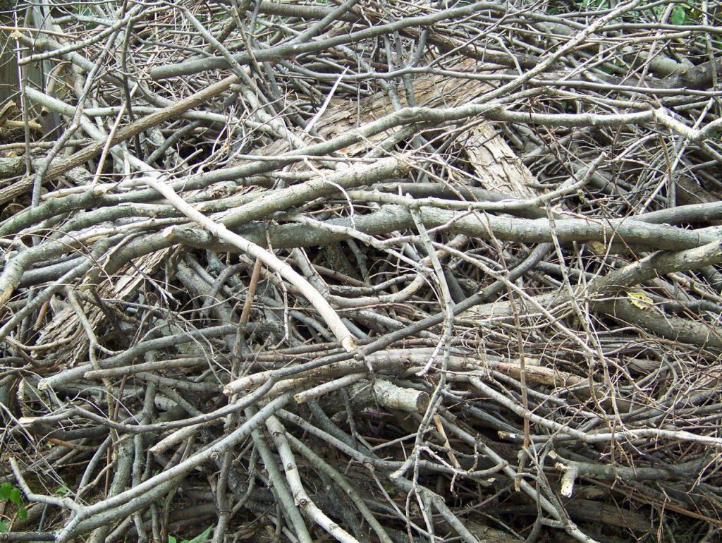 Äste und Zweige Haufen