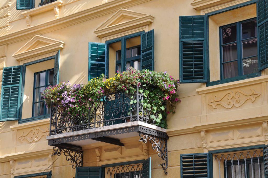 Schnecken auf Balkon
