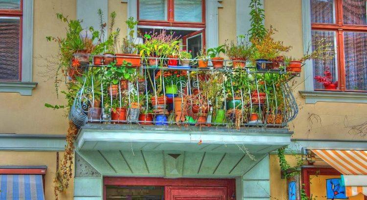 Balkon schnecken