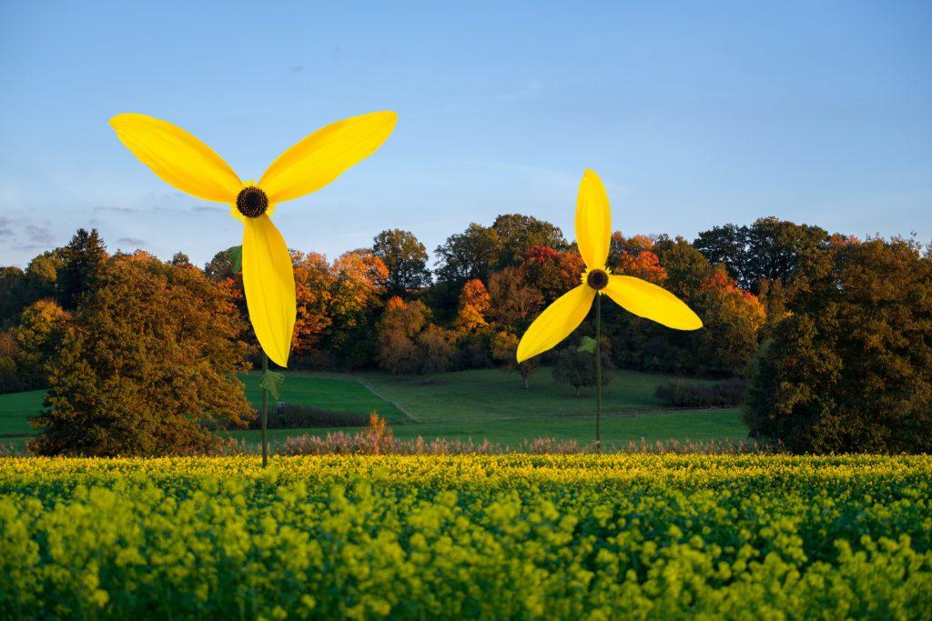 Windrad Garten Sonnenblume Windmühle