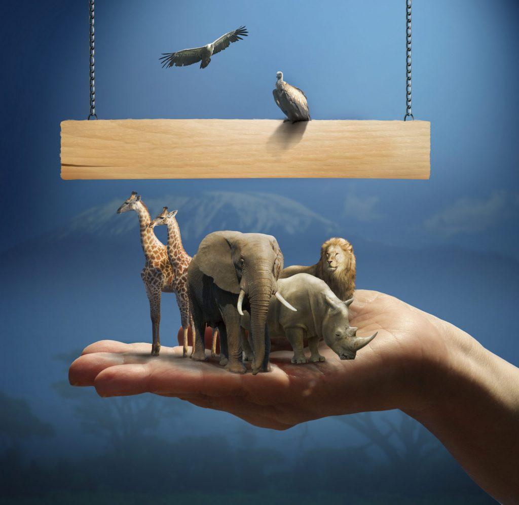 Tierschutz ist wichtig!