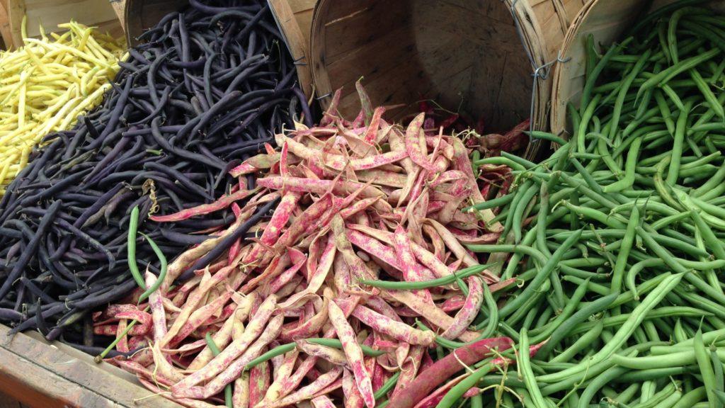 Bohnensorten anbauen