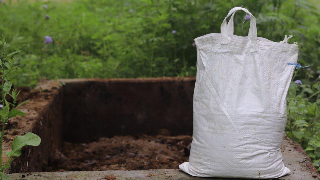 Kompost für Buschbohnen
