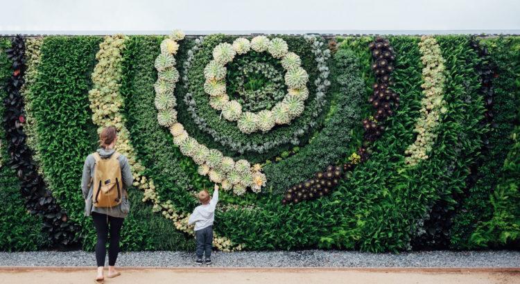 Vertikaler Garten Wandbegrünung
